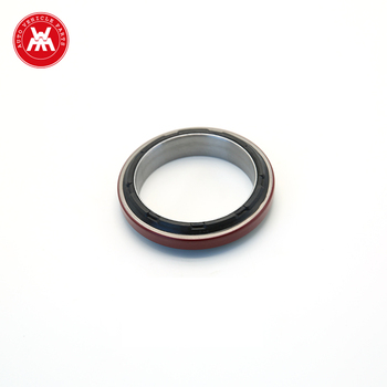 Weltake WMM OEM1833096C92 Diesel Engine Spare Parts Rear Front Oil Seal For MF1306