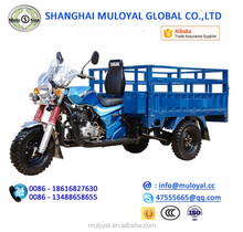 MS200ZH-BG Motorized Tricyce for Cargo Loading Goods Trike for Farm Use Three Wheels Motorcycles