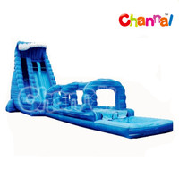 Giant Adult Backyard Inflatable Water Slides for Sales ,Inflatable Wave Water Slip N Slide