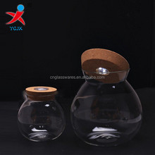 glass globe jar terrarium with LED light in cork lid