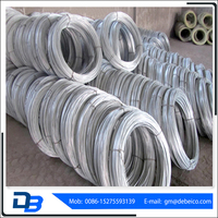 Galvanized wire Q195 Material Galvanized Steel Wire From Shandong China