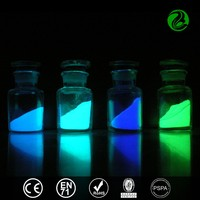 Photoluminescent Pigment Glow In The Dark luminous powder