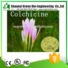 Colchicum autumnale extract Colchicine powder CAS No 64-86-8/competitive colchicine price