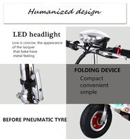 Electric Foldable Bike electric snow scooter dolphin electric scooter