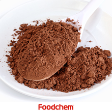 Bulk High Quality Alkalized Natural 10-12% Cocoa Powder From China