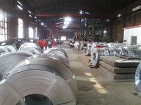 Aluzinc / Galvalume / Zincalume Coils And Sheets (Aluzink) Steel In Coils