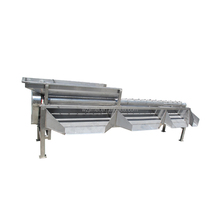 Top Quality Fruit Grader Sorter Machine/date Fruit Sizer for Sale
