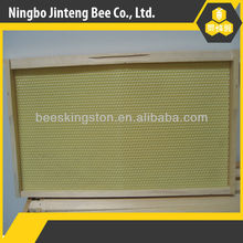 Assembled high quality beekeeping pine wooden frame with plastic foundation for beehive