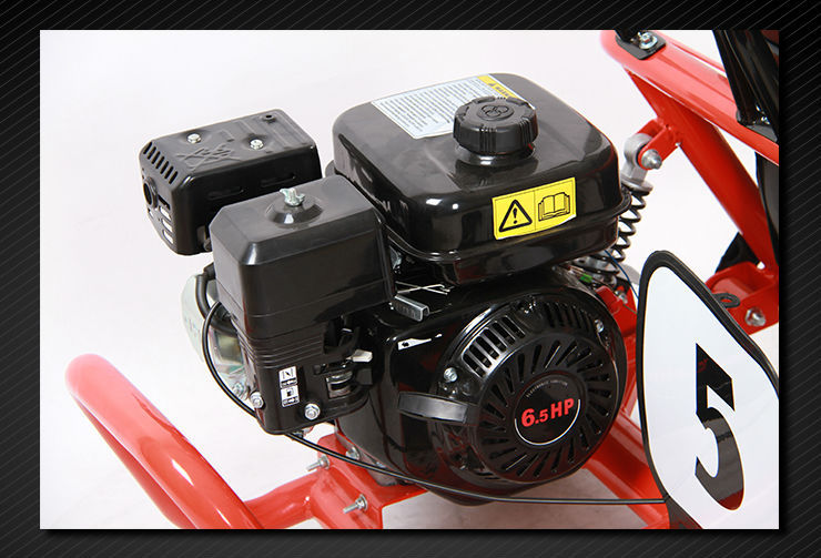 196cc 4 stroke 6.5HP 6inch racing Hydraulic disc brake centrifugal dry adult pedal car E-MARK approval