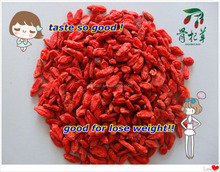 2015 Dried Goji Berries in china,goji berry seed seller,Top Quality Dried Fruit Goji Berry Supplier