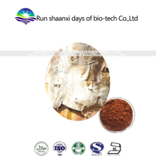Pharmaceutical using Pine bark extract 95% OPC/pine bark mulch/pine bark powder Polyphenol 30%-95%