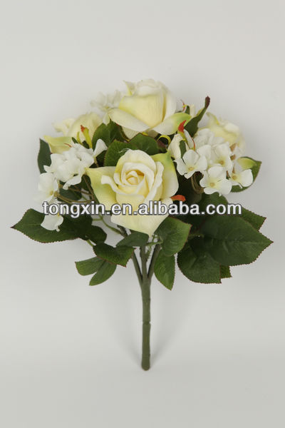 stable supplying variegate color factory purchase green rose bushes