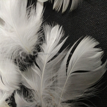 goose feather jacket 4-6 cm washed feather for sale
