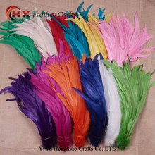 Hot sale rooster feathers dyed colourful rooster tail feathers price of cock feather trims