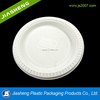 eco-friendly corn starch plastic type tray for cake and natural corn starch plastic BBQ and food plastic tray