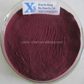 High Quality GMP standard Aronia Extract/Aronia Powder/Chokeberry Extract
