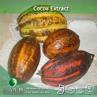 Polyphenols & Theobromine Extract (Cocoa Bean) In Fine Powder