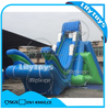 Crazy Giant Drop Kick Inflatable Water Slide With Frame Pool for Sale