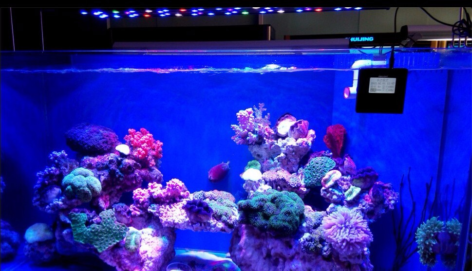 2017 saltwater 180W 250W 300W intelligent aquarium coral reef led light