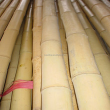 Cheap bamboo poles for sale