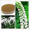 Pure Black Cohosh Powder Extract/Bulk Black Cohosh Powder/Natural Plant Black Cohosh Extract