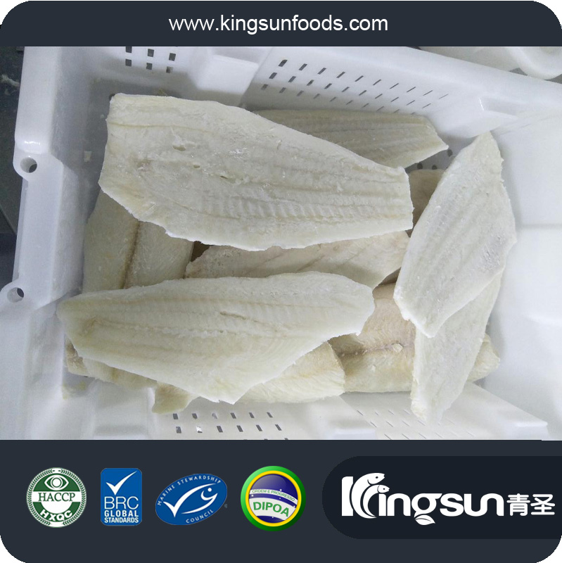 New Arrival Frozen Fresh Miromesistius australis South Blue Whiting Fish Fillet