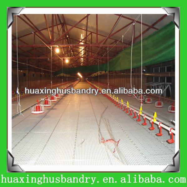 Poultry farm chicken coop cage
