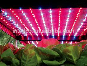 UL certified LL231 led plant grow light led line light