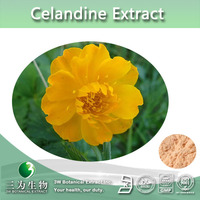 Top Quality Lesser Celandine Extract ,Greater Celandine Extract Alkaloids 10%