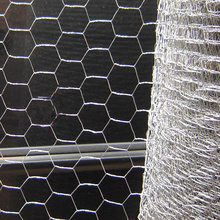 3/4 inch Wholesale high quality galvanized chicken wire netting