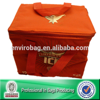 Lead-free NON WOVEN Promotional Beer Carry Bag