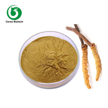 Mushroom Professional Manufacturer Supply Cordyceps Sinensis Extract Powder