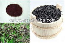Professional manufacturer supply GMP certified low price Pure Nature Black Rice Extract Powde