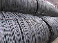 Tire Bead Wire&Hose wire Steel Wire Rod