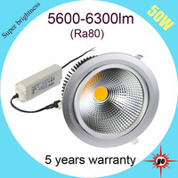 for star rated luxurious hotel 8 inch led retrofit recessed downlight