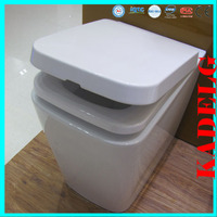Western bathroom used floor mounted P trap toilet