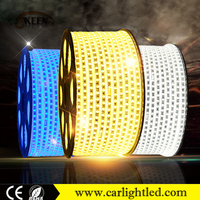 KEEN 220V 14.4W waterproof flexible led light strip 5050 60smd/m 2700k warm white led strip lighting for decoration