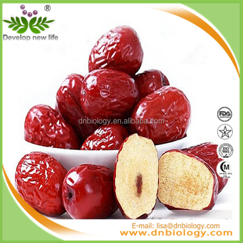 DN Biology Promotion-Jujube Powder/Jujube Concentrate Juice Powder/Jujube Fruit Powder Soluble in water