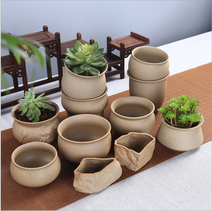 low bowl planters succulent flower pots