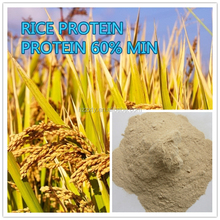 Professional Supplier Poultry Feed Rice Gluten Meal 60% / Rice Protein