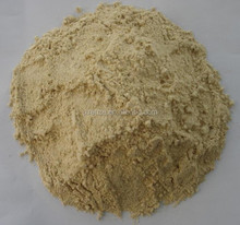 Hot sale, high quality Dried Vital Wheat Gluten Flour