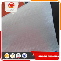 100% virgin PE tarpaulin sheet | China PE tarpaulin in Rolls