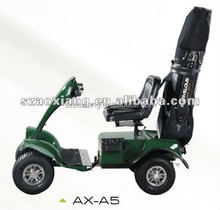 Hot selling 1 seater electric golf cart scooter/AX-A5