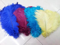 various pantone color home/office/ostrich feathers for wedding decor