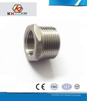 304 Or 316 Stainless Steel Casting Pipe Fittings Male and Female Threaded DIN Hexagonal Reducing Nipple