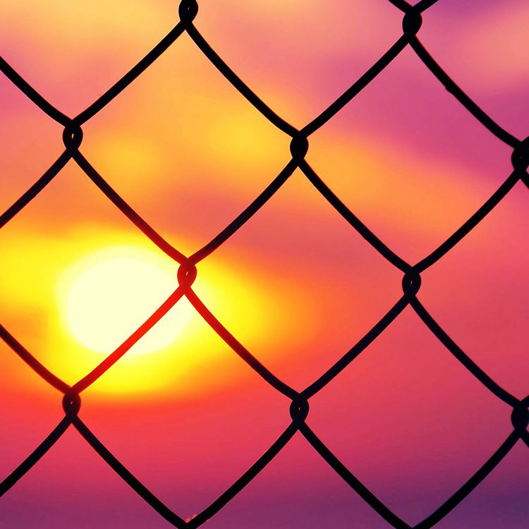 pvc chain link fence galvanzied for sale