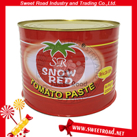 Wholesale 2200g Tomato Paste Ketchup Sauce Brand Names