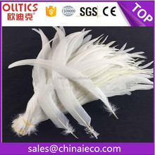 Wholesale chicken feather white cock tail feathers