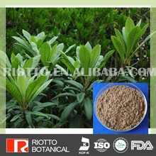 Best Price natural ursolic acid loquat leaf p.e.