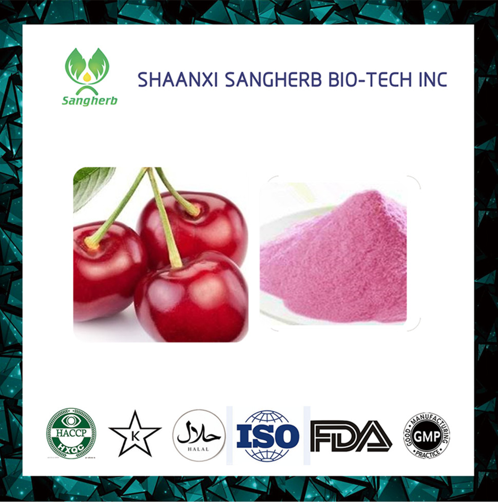 Wholesa Superior quality Cherry juice concentrate powder